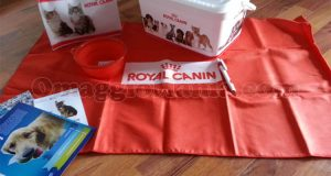 kit vacanze Royal Canin EstateInsieme di Sabry77