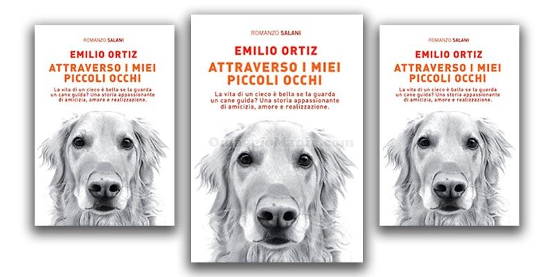 Attraverso i miei occhi di Emilio Ortiz