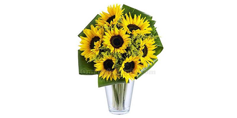 bouquet di girasoli FloraQueen