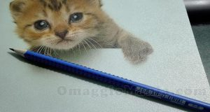matita Faber Castell di Tiziana