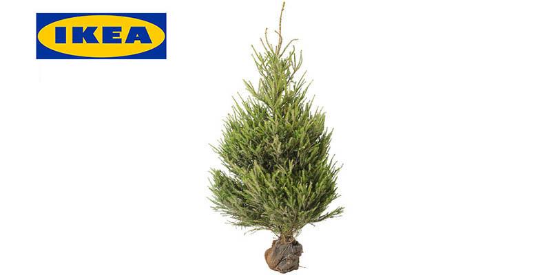 IKEA Compostiamoci bene 2017