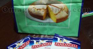 borsa porta torta Paneangeli