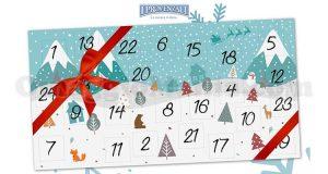 calendario Avvento I Provenzali 2017