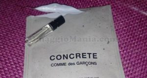 campione omaggio Concrete Comme des Garcons di Adele