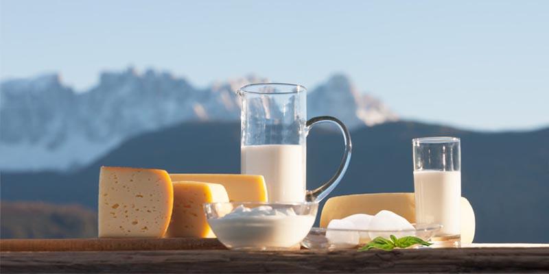 prodotti lattiero caseari Alto Adige