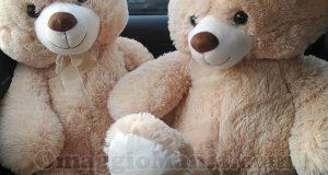 super orsi peluche di Miriam da Toys Center