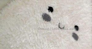 tappeto vinto da Francy con Smallable