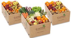 fornitura Cortilia