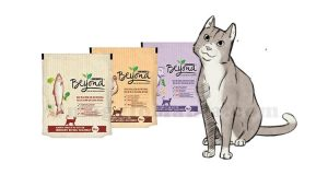 Purina Beyond gatto