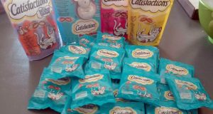 kit cibo per gatti Catisfaction con The Insiders di Silvia