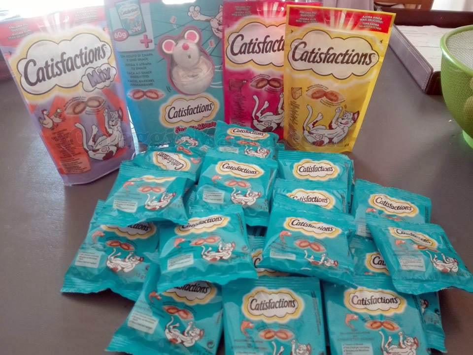 kit cibo per gatti Catisfaction con The Insiders di Silvia