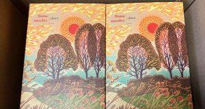libro Elmet di Fiona Mozley Fazi Editore