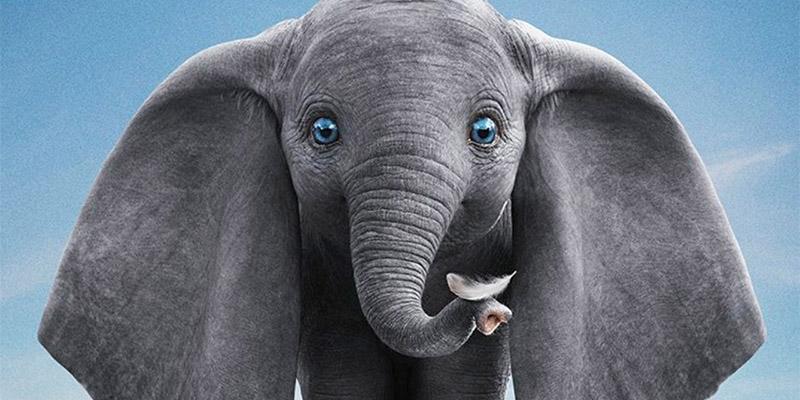 Dumbo Disney 2019