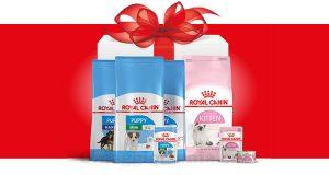 concorso Royal Canin Vinci 1 anno di alimentazione per lui