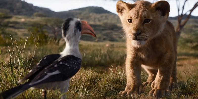 film Disney Il Re Leone 2019