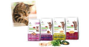 forniture di prodotti Natural Trainer per gatto