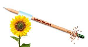 matita semi di girasole con LFO