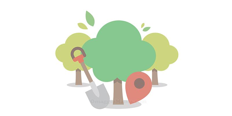 alberi Treedom