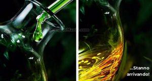 anticipazione tester Olio di canapa biologico TRND